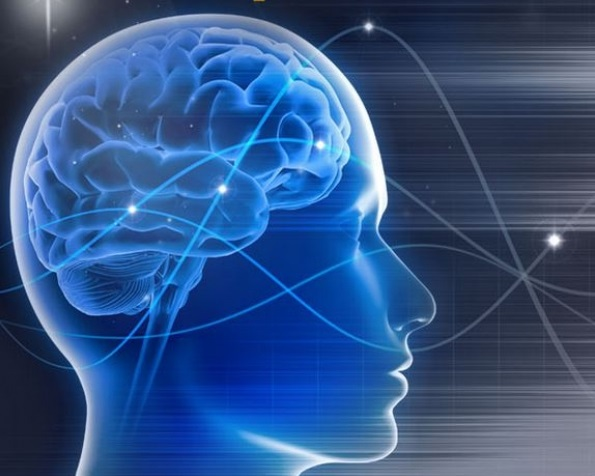 Praxis für Ergotherapie - Neurofeedback